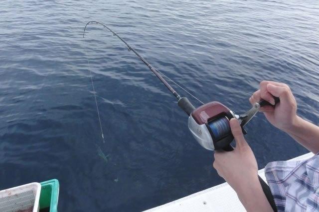 sh-fishing_03.jpg